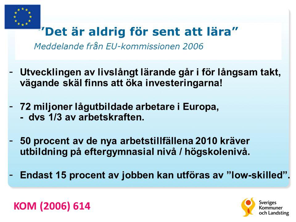 Det är aldrig för sent att lära Meddelande från EU-kommissionen 2006 - Utvecklingen av livslångt lärande går i för långsam takt, vägande skäl finns att öka investeringarna.