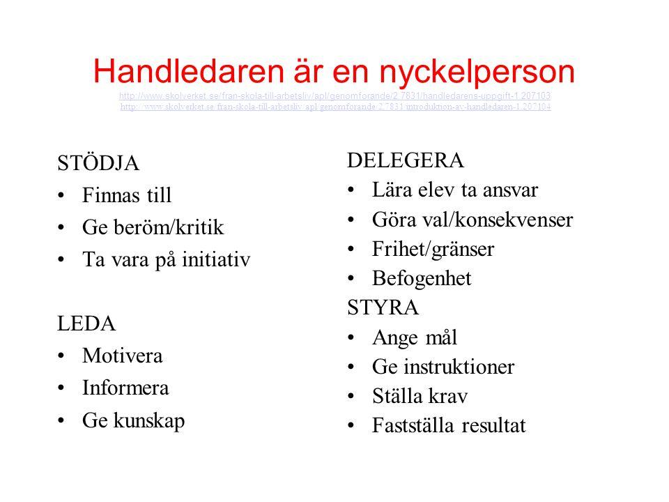 Handledaren är en nyckelperson http://www.skolverket.se/fran-skola-till-arbetsliv/apl/genomforande/2.7831/handledarens-uppgift-1.207103 http://www.sko