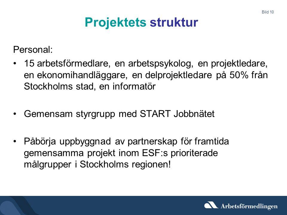 Bild 10 Projektets struktur Personal: •15 arbetsförmedlare, en arbetspsykolog, en projektledare, en ekonomihandläggare, en delprojektledare på 50% frå