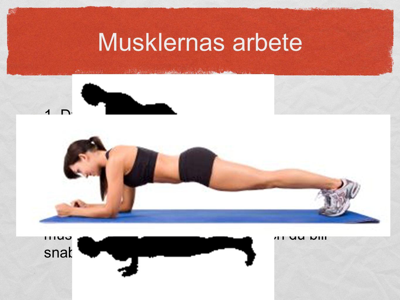 Musklernas arbete 1. Dynamiskt: Rörelse sker (koncentriskt/excentriskt). Kan arbeta en längre period tack vare att syre kommer ut till muskelcellerna