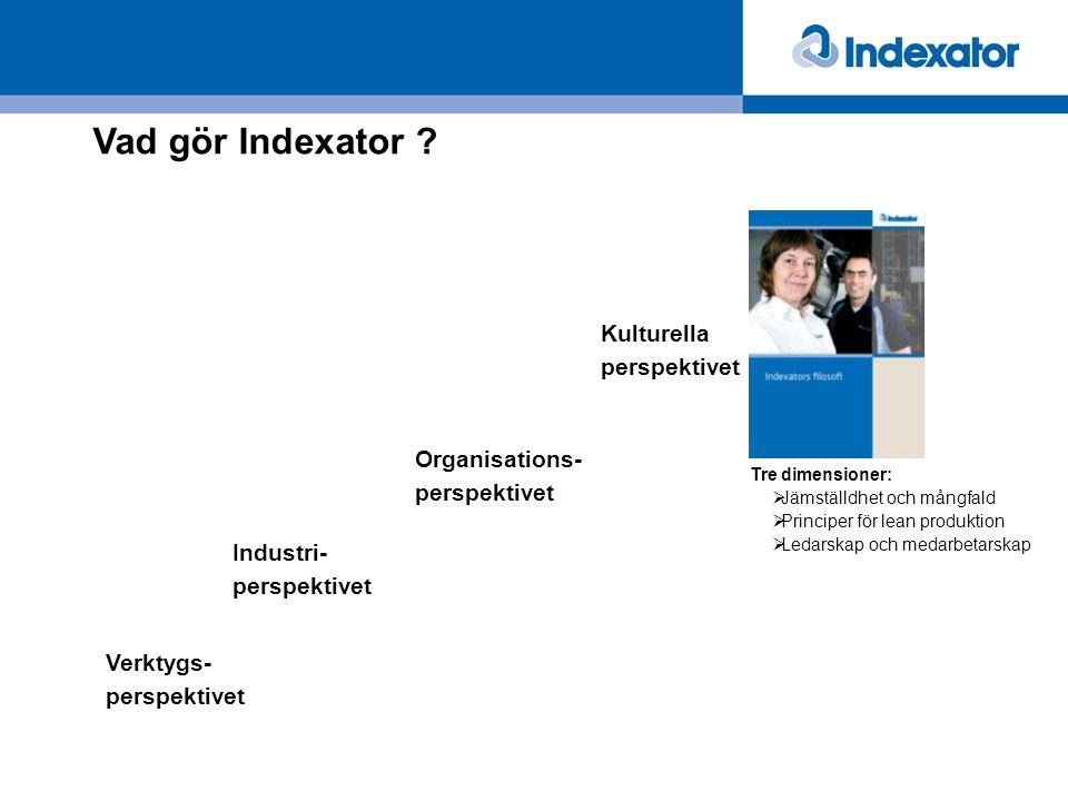 Vad gör Indexator ? Industri- perspektivet Verktygs- perspektivet Organisations- perspektivet Kulturella perspektivet Tre dimensioner:  Jämställdhet