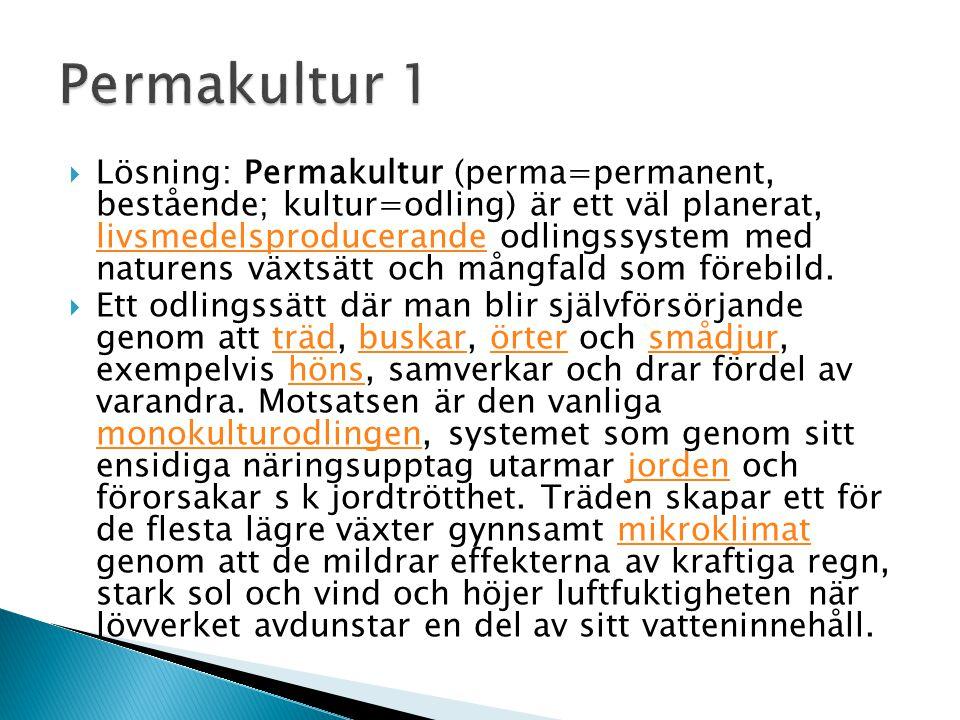  Lösning: Permakultur (perma=permanent, bestående; kultur=odling) är ett väl planerat, livsmedelsproducerande odlingssystem med naturens växtsätt och mångfald som förebild.