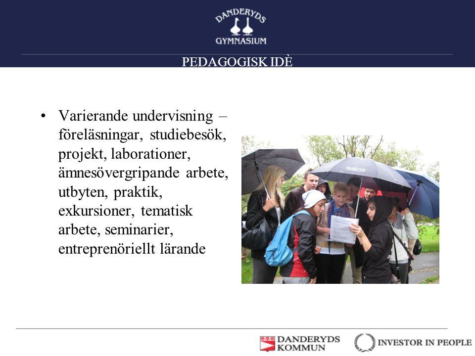 PEDAGOGISK IDÈ •Varierande undervisning – föreläsningar, studiebesök, projekt, laborationer, ämnesövergripande arbete, utbyten, praktik, exkursioner,