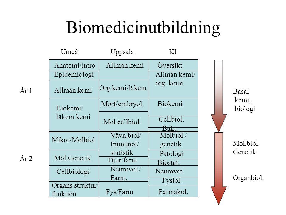 Biomedicinutbildning Anatomi/intro UmeåUppsalaKI ÖversiktAllmän kemi Allmän kemi/ org. kemi Epidemiologi Allmän kemi Biokemi/ läkem.kemi Org.kemi/läke