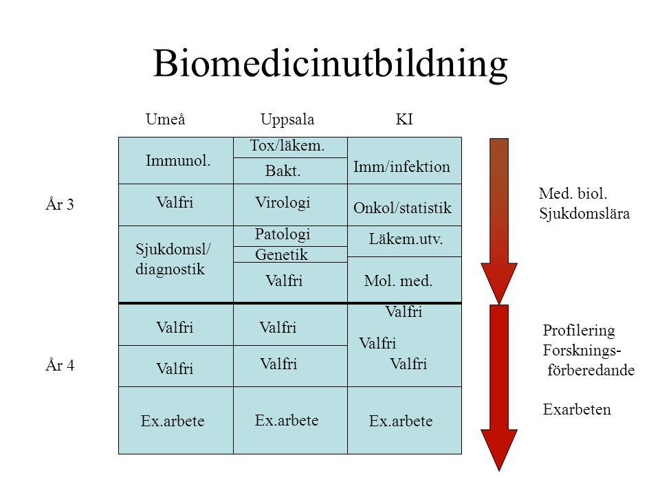 Biomedicinutbildning UmeåUppsalaKI Immunol. Valfri Sjukdomsl/ diagnostik Ex.arbete Valfri Tox/läkem. Bakt. Virologi Patologi Genetik Valfri Ex.arbete