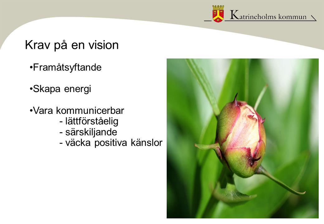 Krav på en vision •Framåtsyftande •Skapa energi •Vara kommunicerbar - lättförståelig - särskiljande - väcka positiva känslor