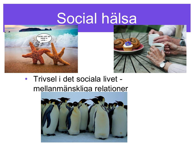 Social hälsa •Trivsel i det sociala livet - mellanmänskliga relationer