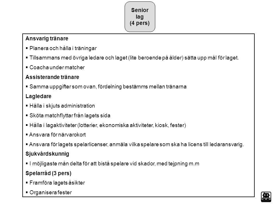 Senior lag (4 pers) Ansvarig tränare  Planera och hålla i träningar  Tillsammans med övriga ledare och laget (lite beroende på ålder) sätta upp mål