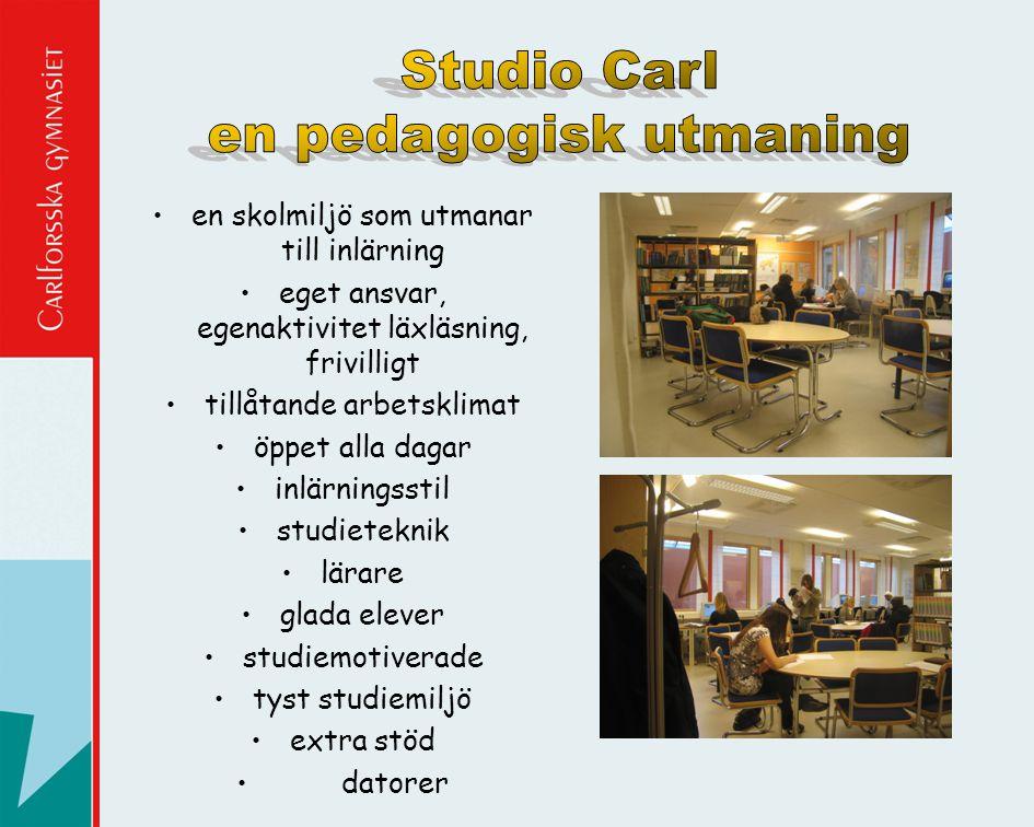 •en skolmiljö som utmanar till inlärning •eget ansvar, egenaktivitet läxläsning, frivilligt •tillåtande arbetsklimat •öppet alla dagar •inlärningsstil