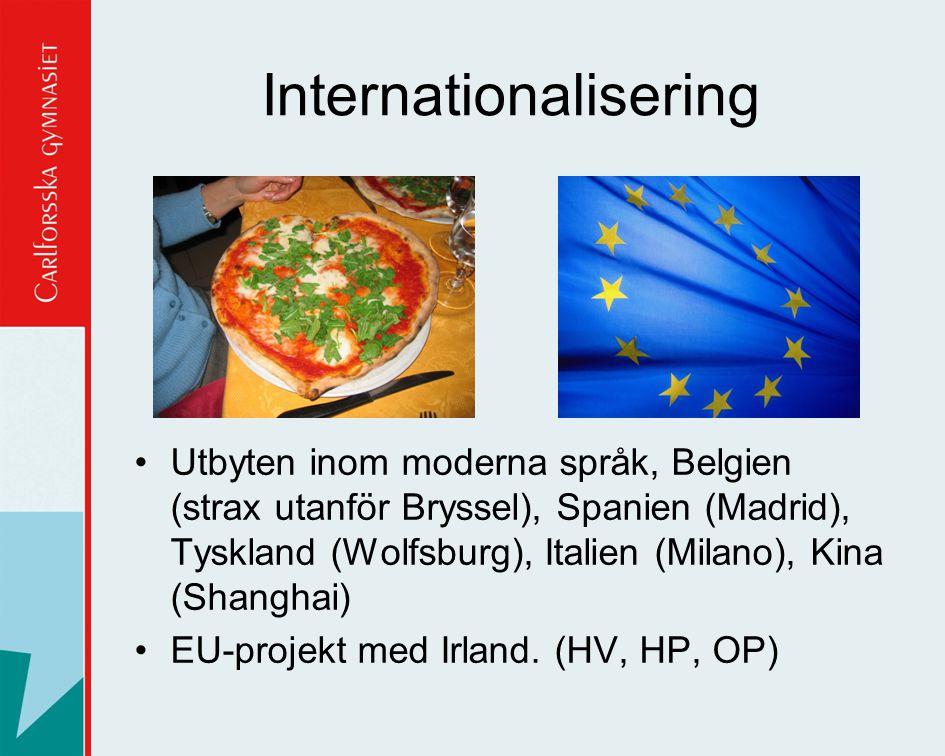 •Utbyten inom moderna språk, Belgien (strax utanför Bryssel), Spanien (Madrid), Tyskland (Wolfsburg), Italien (Milano), Kina (Shanghai) •EU-projekt me