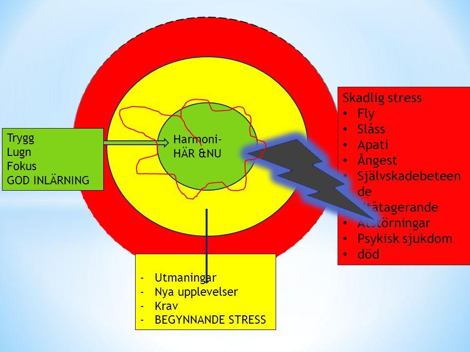 Skadlig stress • Fly • Slåss • Apati • Ångest • Självskadebeteen de • Utåtagerande • Ätstörningar • Psykisk sjukdom • död Harmoni- HÄR &NU -Utmaningar