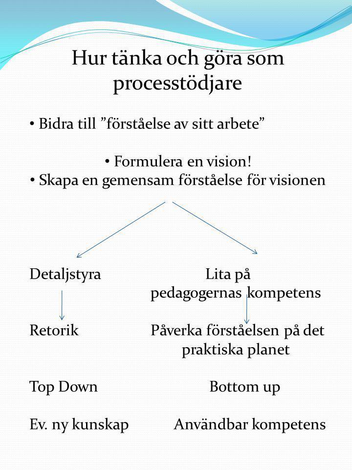 """Hur tänka och göra som processtödjare • Bidra till """"förståelse av sitt arbete"""" • Formulera en vision! • Skapa en gemensam förståelse för visionen Deta"""