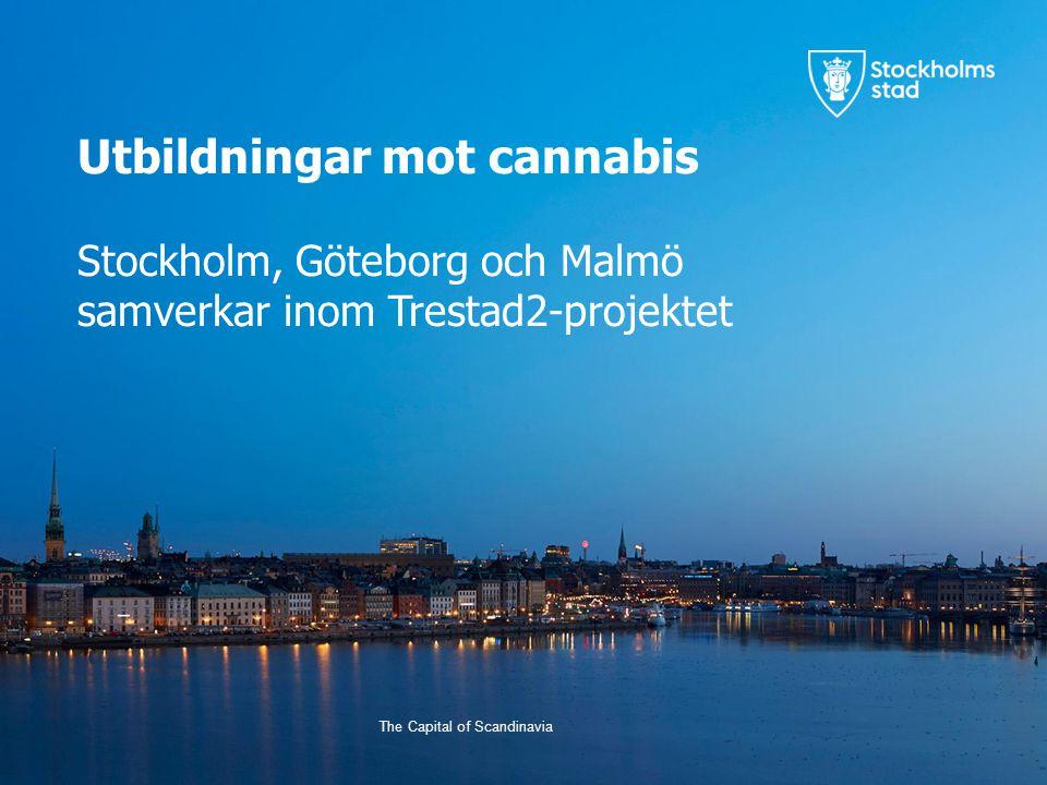 The Capital of Scandinavia Utbildningar mot cannabis Stockholm, Göteborg och Malmö samverkar inom Trestad2-projektet