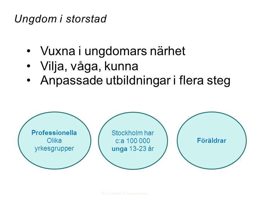 The Capital of Scandinavia Ungdom i storstad Stockholm har c:a 100 000 unga 13-23 år Professionella Olika yrkesgrupper Föräldrar •Vuxna i ungdomars nä