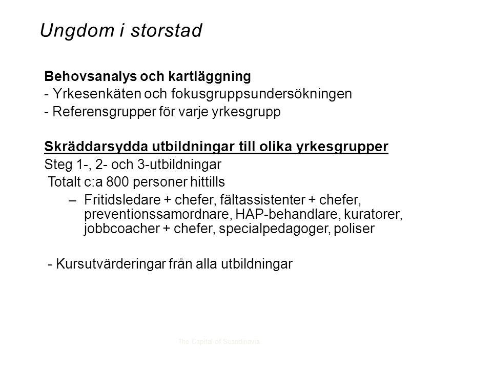 The Capital of Scandinavia Behovsanalys och kartläggning - Yrkesenkäten och fokusgruppsundersökningen - Referensgrupper för varje yrkesgrupp Skräddarsydda utbildningar till olika yrkesgrupper Steg 1-, 2- och 3-utbildningar Totalt c:a 800 personer hittills –Fritidsledare + chefer, fältassistenter + chefer, preventionssamordnare, HAP-behandlare, kuratorer, jobbcoacher + chefer, specialpedagoger, poliser - Kursutvärderingar från alla utbildningar Ungdom i storstad