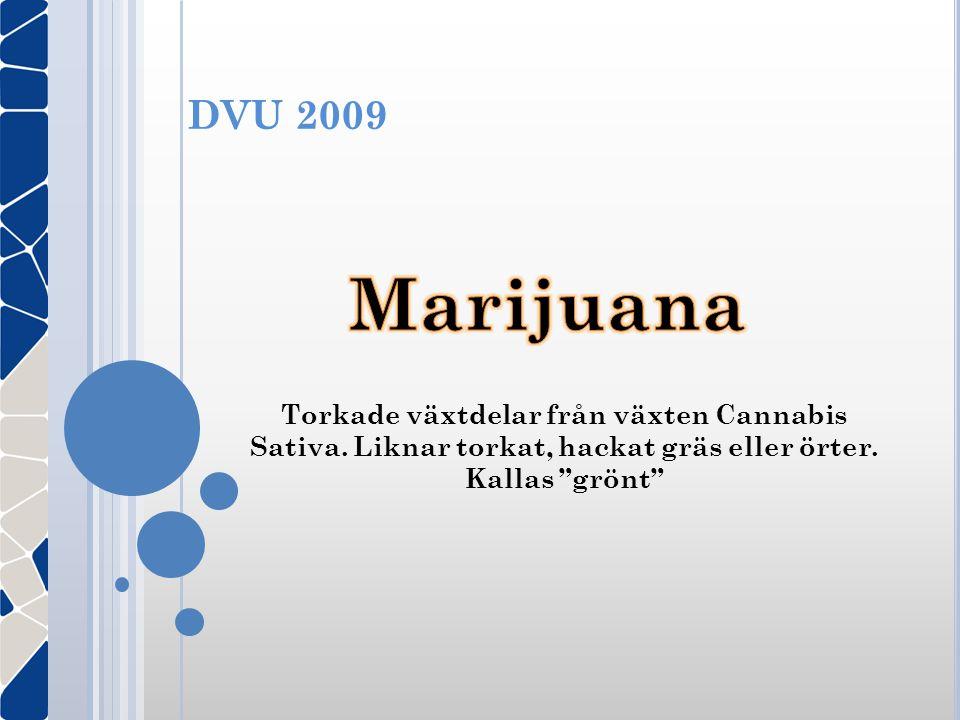 """DVU 2009 Torkade växtdelar från växten Cannabis Sativa. Liknar torkat, hackat gräs eller örter. Kallas """"grönt"""""""