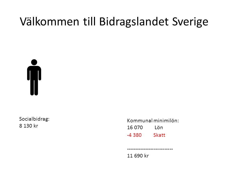 Välkommen till Bidragslandet Sverige Socialbidrag: 8 130 kr Lönsamhet vid arbete: +4875 (MGE 62%) Kommunal minimilön: 16 070 Lön -4 380 Skatt +1 285 JSA --------------------------- 13 005 kr SFI: 13 tim/vArbete : 40 tim/v