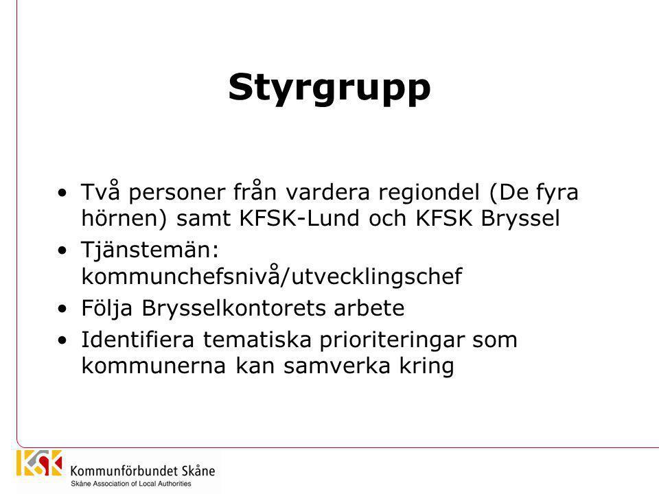 Styrgrupp •Två personer från vardera regiondel (De fyra hörnen) samt KFSK-Lund och KFSK Bryssel •Tjänstemän: kommunchefsnivå/utvecklingschef •Följa Br