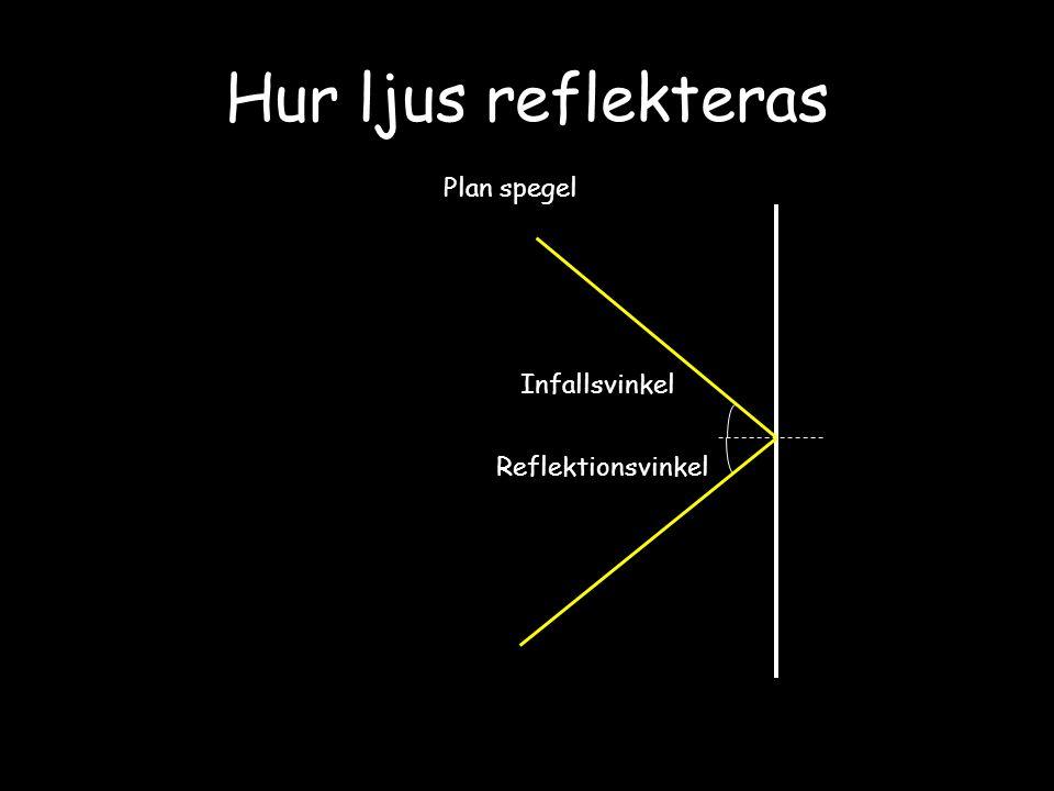 Hur ljus reflekteras Plan spegel Infallsvinkel Reflektionsvinkel