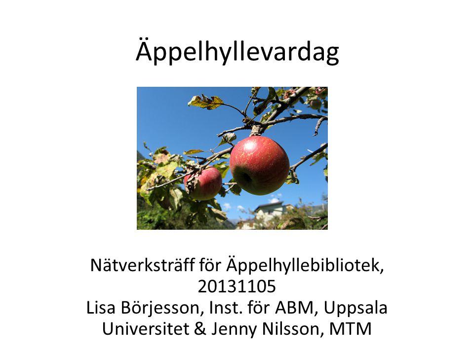 Äppelhyllevardag Nätverksträff för Äppelhyllebibliotek, 20131105 Lisa Börjesson, Inst.