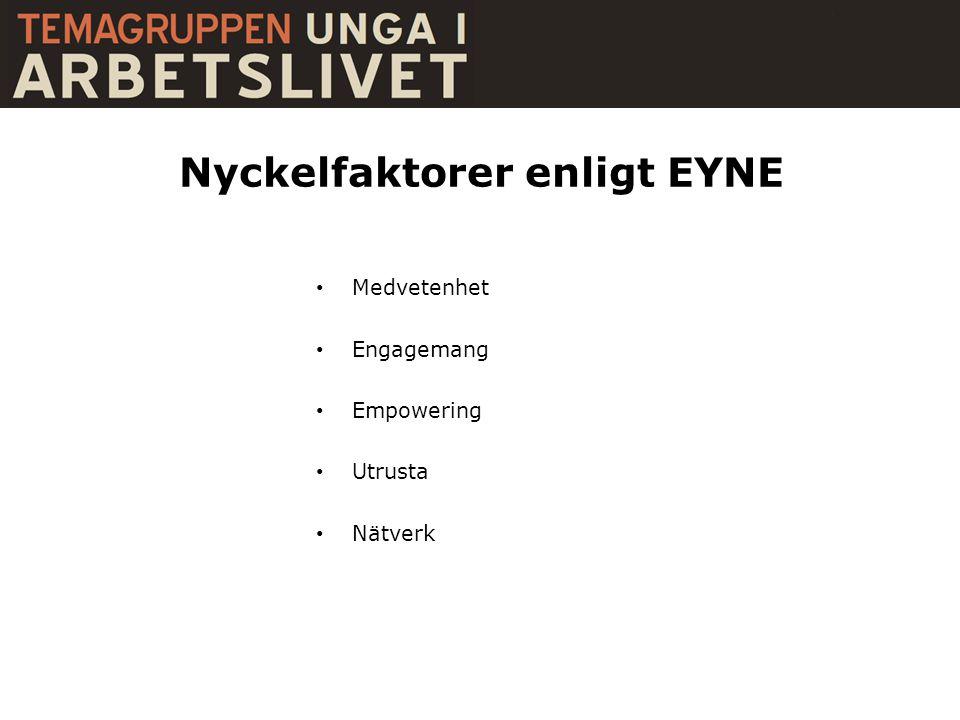 Nyckelfaktorer enligt EYNE • Medvetenhet • Engagemang • Empowering • Utrusta • Nätverk