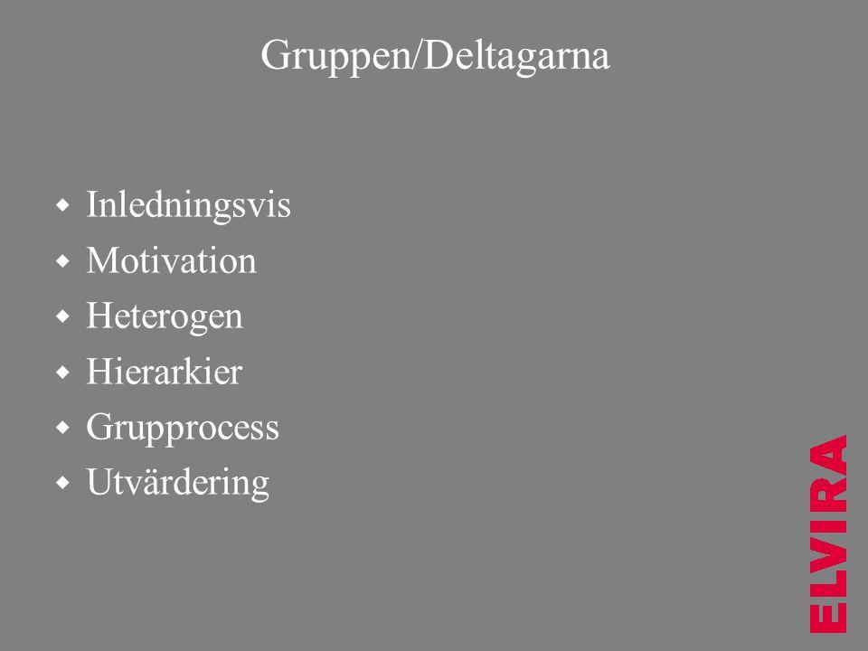 Gruppen/Deltagarna  Inledningsvis  Motivation  Heterogen  Hierarkier  Grupprocess  Utvärdering