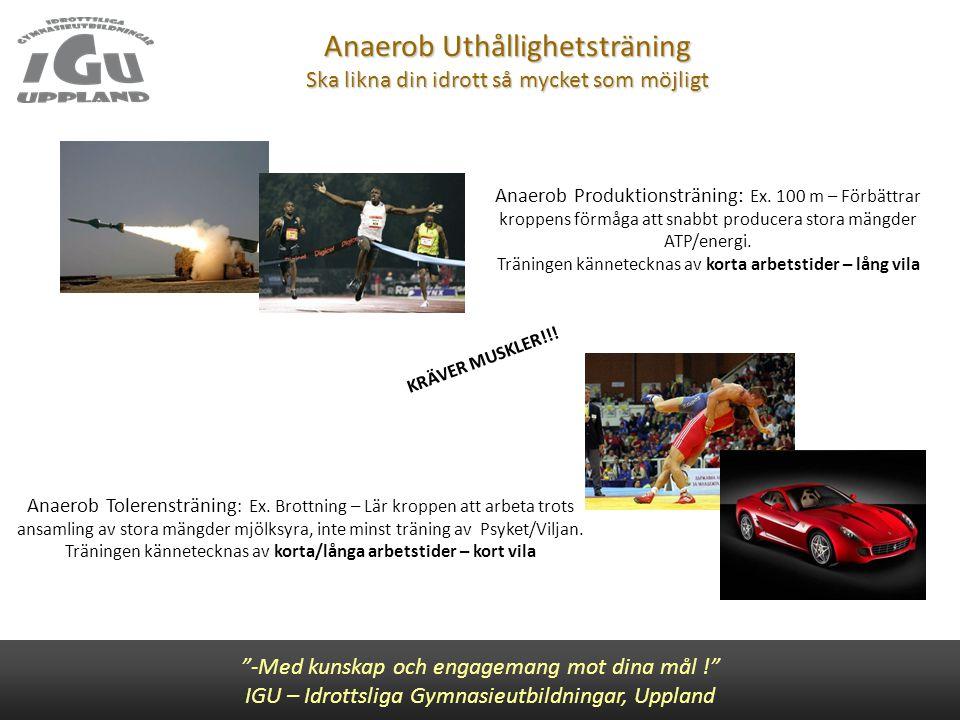 """Anaerob Uthållighetsträning Ska likna din idrott så mycket som möjligt """"-Med kunskap och engagemang mot dina mål !"""" IGU – Idrottsliga Gymnasieutbildni"""