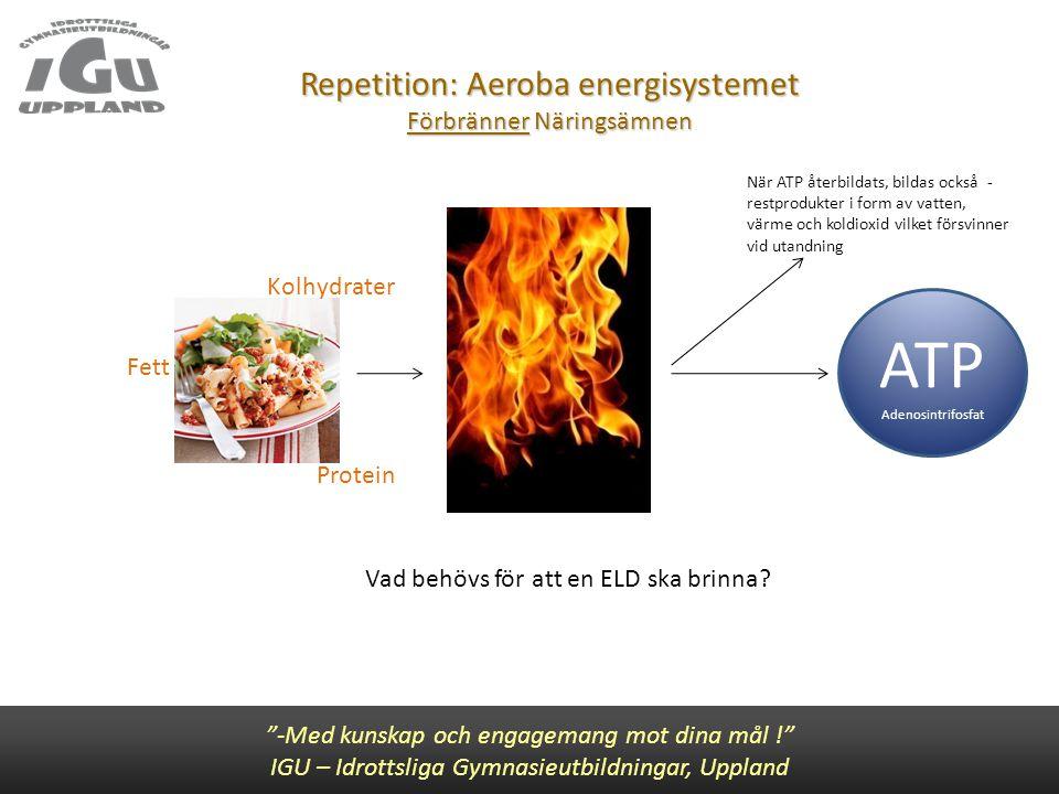 """Repetition: Aeroba energisystemet Förbränner Näringsämnen Vad behövs för att en ELD ska brinna? """"-Med kunskap och engagemang mot dina mål !"""" IGU – Idr"""