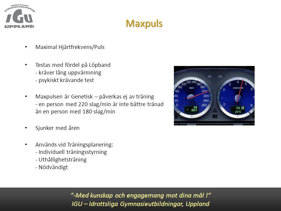 """Maxpuls """"-Med kunskap och engagemang mot dina mål !"""" IGU – Idrottsliga Gymnasieutbildningar, Uppland • Maximal Hjärtfrekvens/Puls • Testas med fördel"""