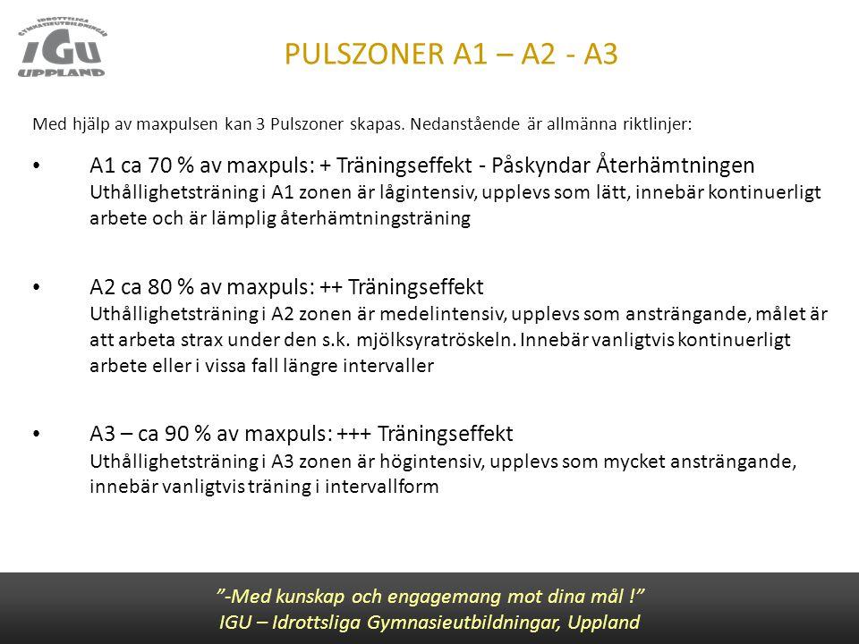 """PULSZONER A1 – A2 - A3 """"-Med kunskap och engagemang mot dina mål !"""" IGU – Idrottsliga Gymnasieutbildningar, Uppland Med hjälp av maxpulsen kan 3 Pulsz"""