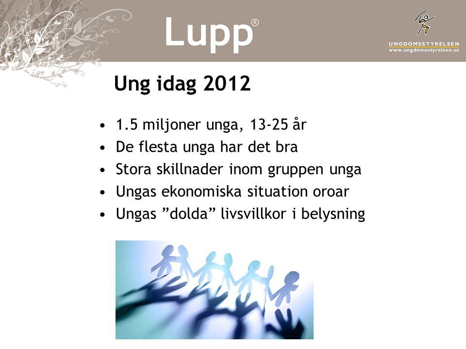 Ung idag 2012 •1.5 miljoner unga, 13-25 år •De flesta unga har det bra •Stora skillnader inom gruppen unga •Ungas ekonomiska situation oroar •Ungas dolda livsvillkor i belysning