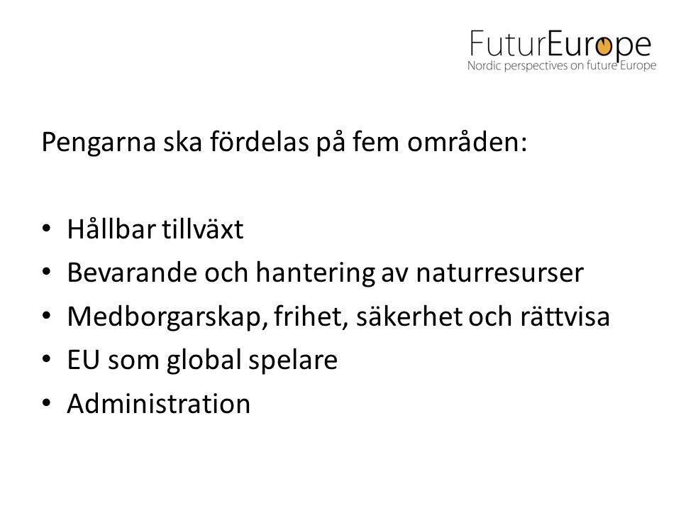 Pengarna ska fördelas på fem områden: • Hållbar tillväxt • Bevarande och hantering av naturresurser • Medborgarskap, frihet, säkerhet och rättvisa • EU som global spelare • Administration