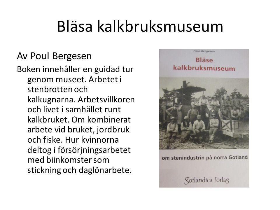 Bläsa kalkbruksmuseum Av Poul Bergesen Boken innehåller en guidad tur genom museet. Arbetet i stenbrotten och kalkugnarna. Arbetsvillkoren och livet i