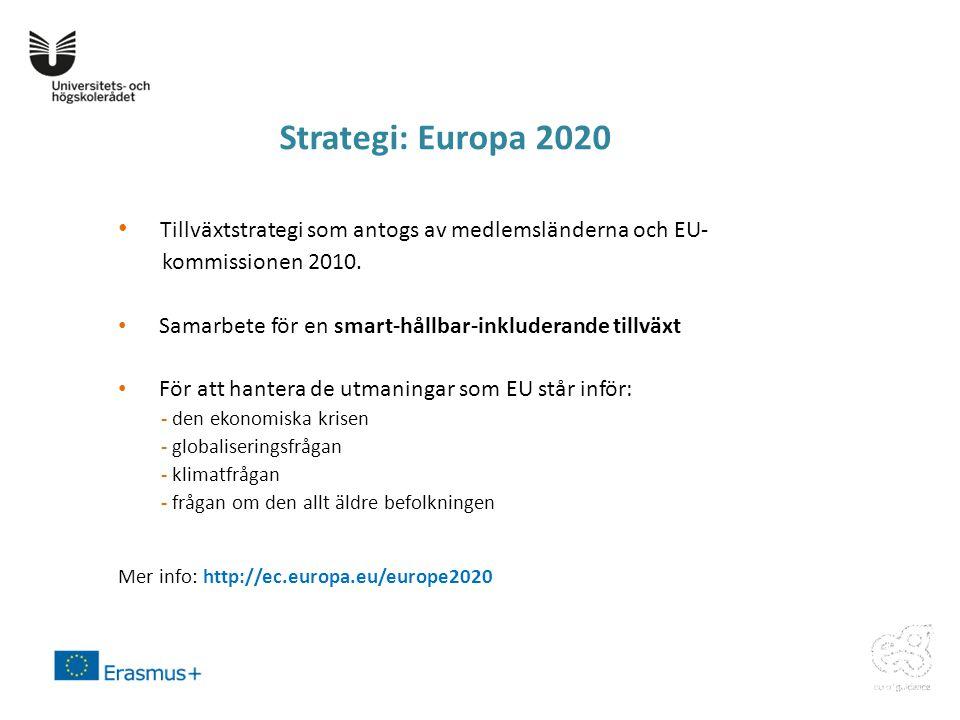 • Tillväxtstrategi som antogs av medlemsländerna och EU- kommissionen 2010.