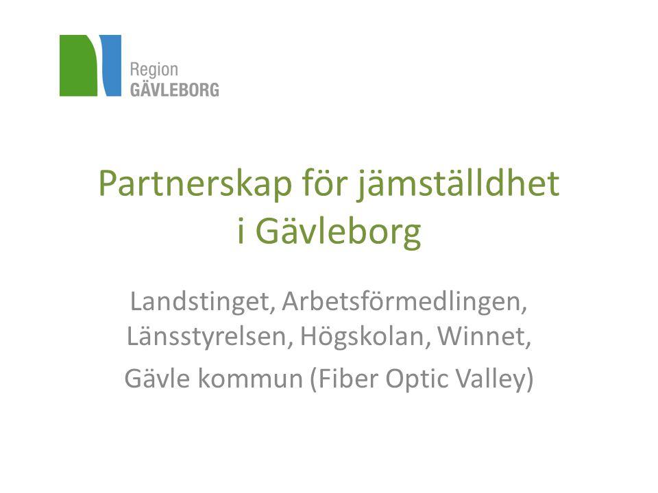 Partnerskap för jämställdhet i Gävleborg Landstinget, Arbetsförmedlingen, Länsstyrelsen, Högskolan, Winnet, Gävle kommun (Fiber Optic Valley)