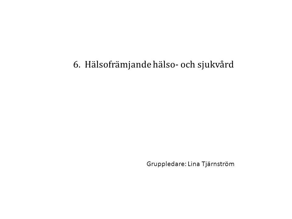 6. Hälsofrämjande hälso- och sjukvård Gruppledare: Lina Tjärnström