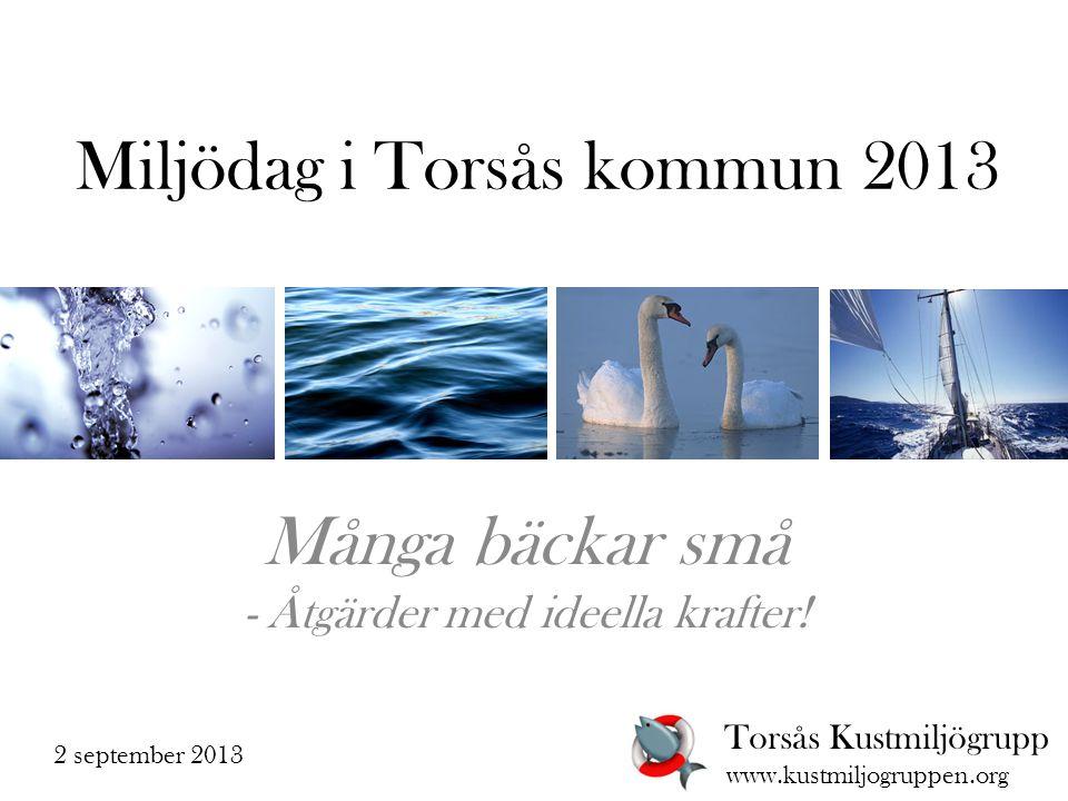 Miljödag i Torsås kommun 2013 Många bäckar små - Åtgärder med ideella krafter.