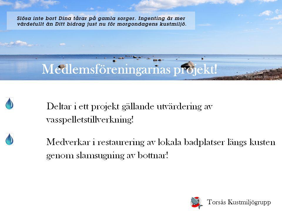 Medlemsföreningarnas projekt! Torsås Kustmiljögrupp