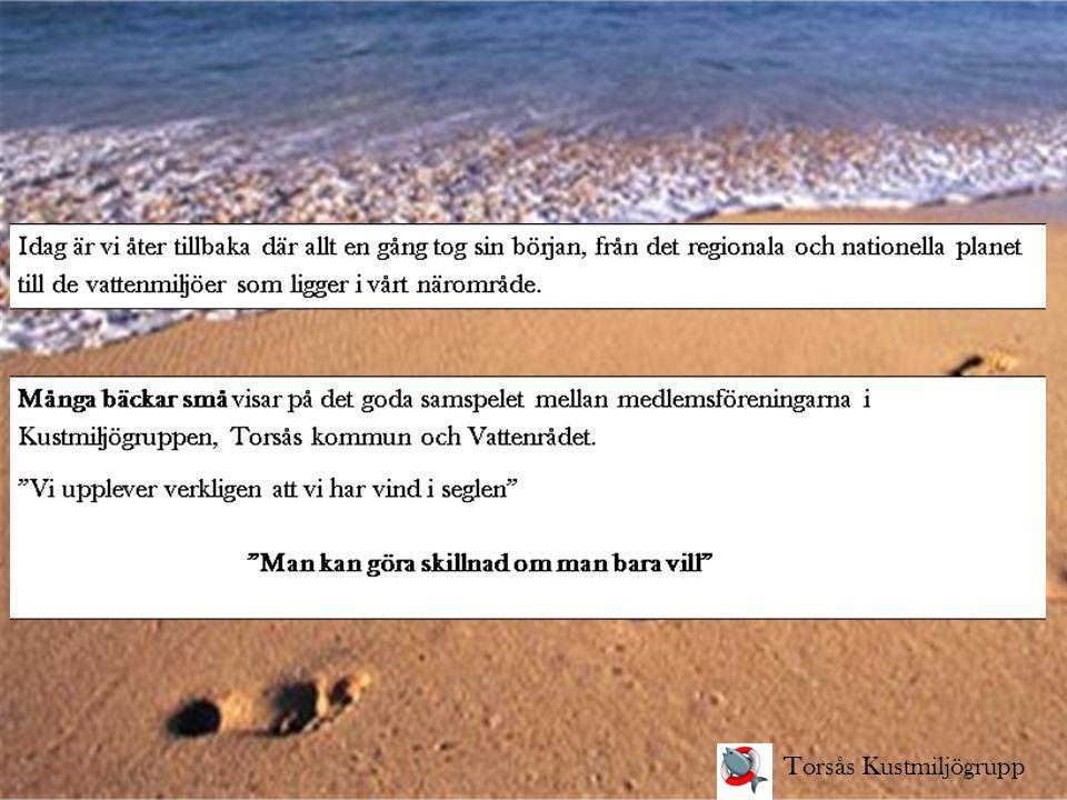Många bäckar små - Åtgärder med ideella krafter Arbetsinriktningen för kustmiljöåret 2013 är med siktet inställt på att bakom varje framgång för ett friskare Kalmarsund finns modiga beslut fattade av få.