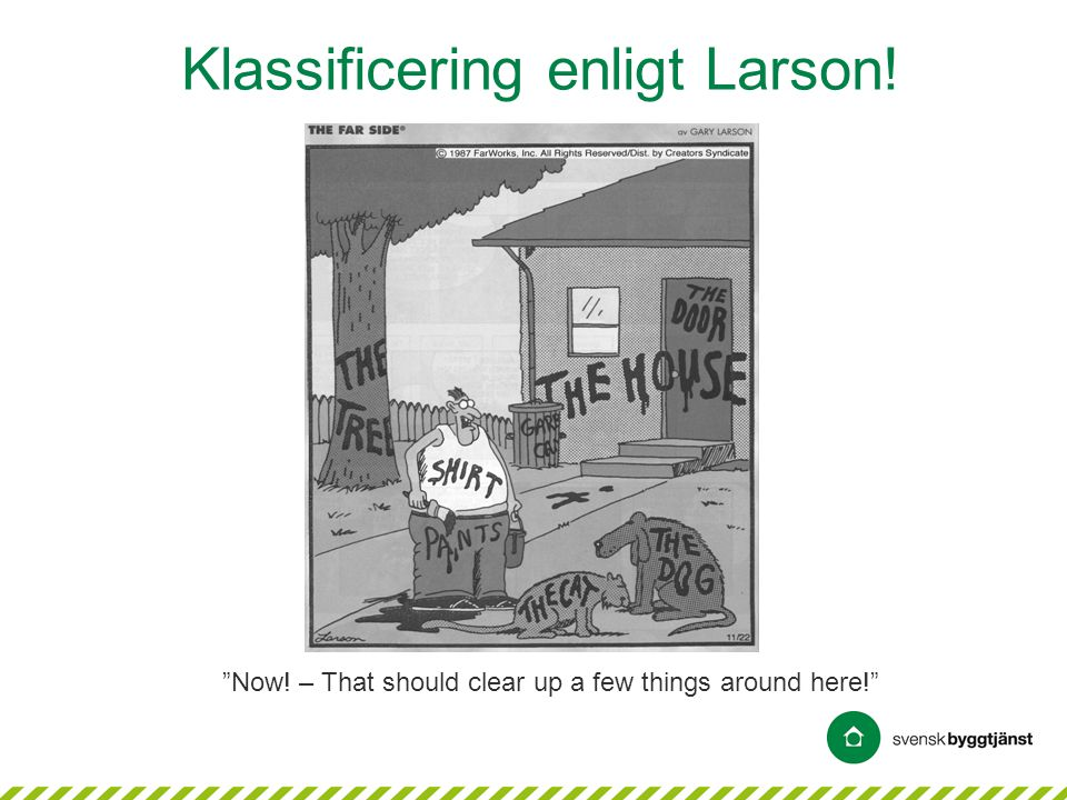 Klassificering enligt Larson! Now! – That should clear up a few things around here!