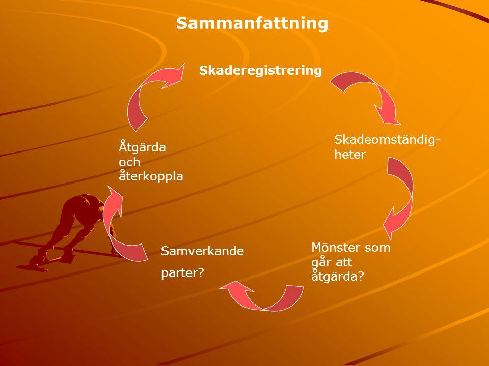 Sammanfattning Skaderegistrering Skadeomständig- heter Mönster som går att åtgärda.