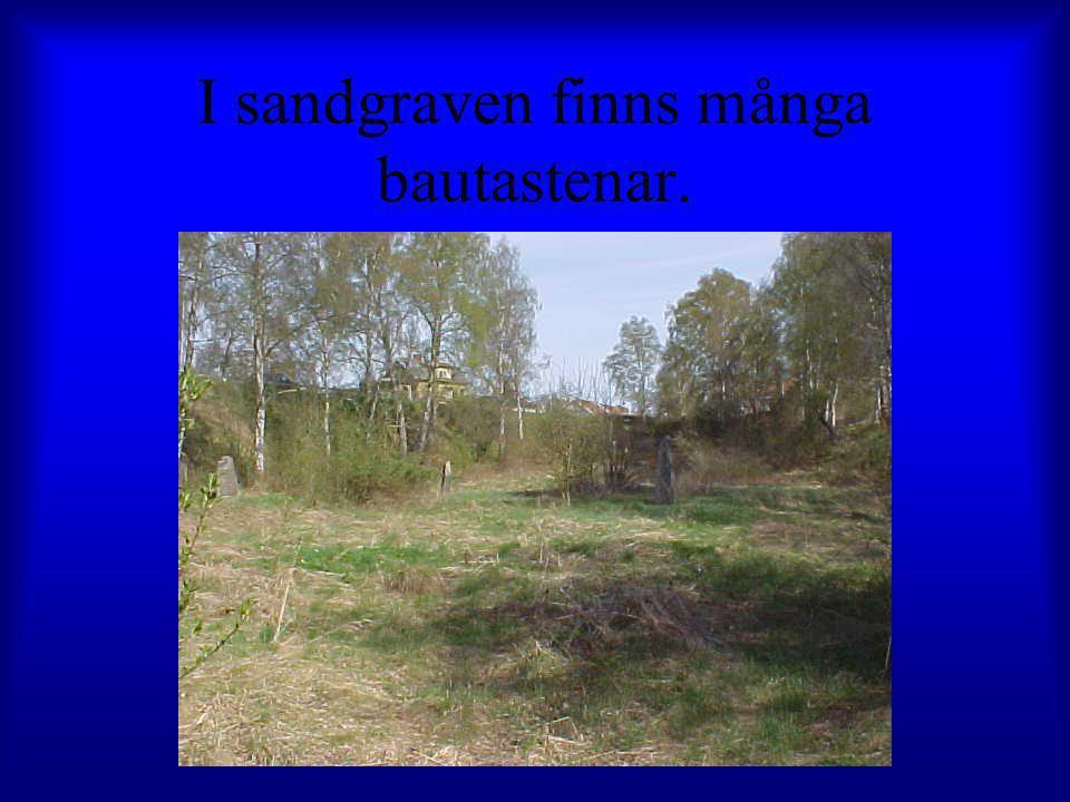 I sandgraven finns många bautastenar.