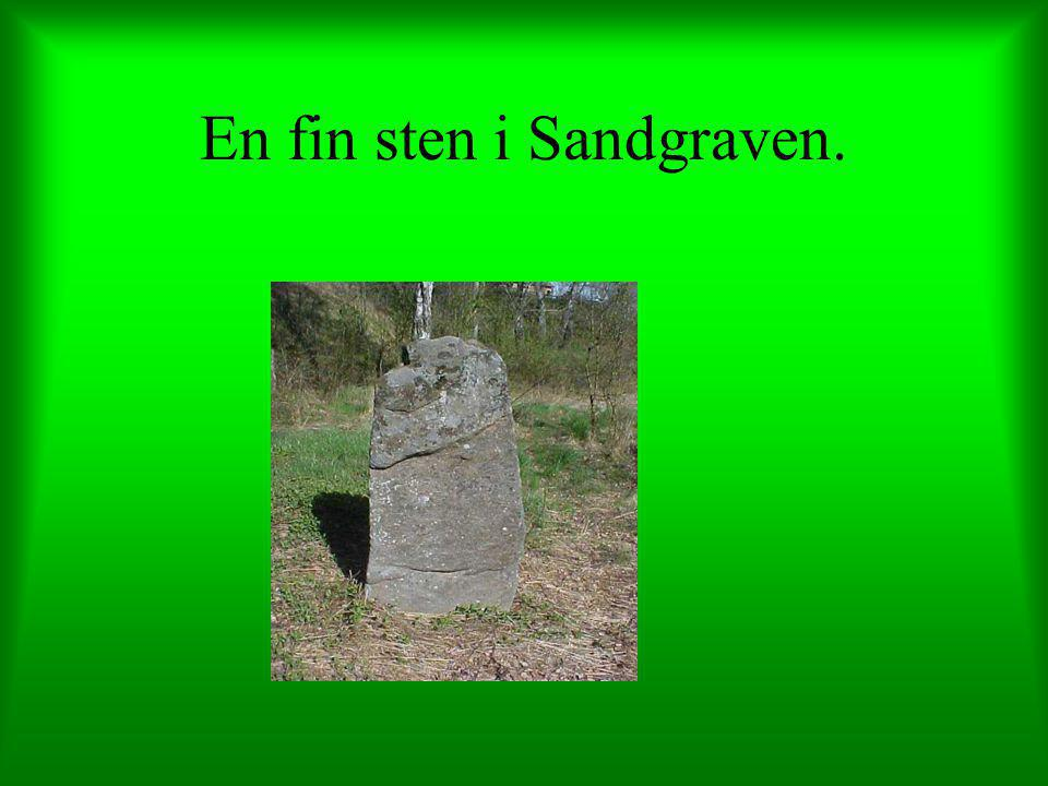 En fin sten i Sandgraven.