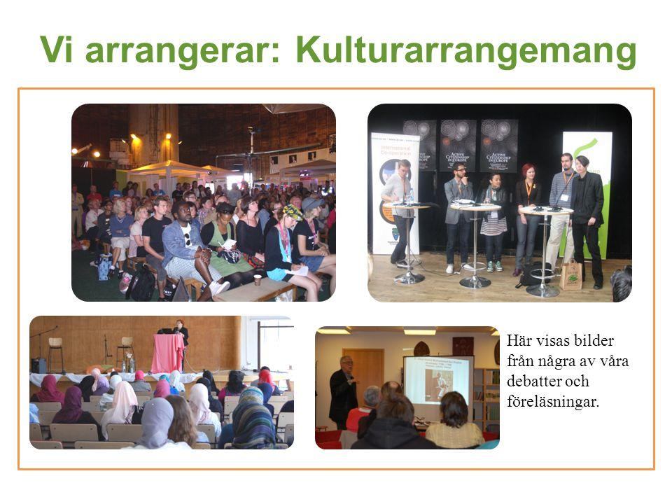 Vi arrangerar: Kulturarrangemang Här visas bilder från några av våra debatter och föreläsningar.
