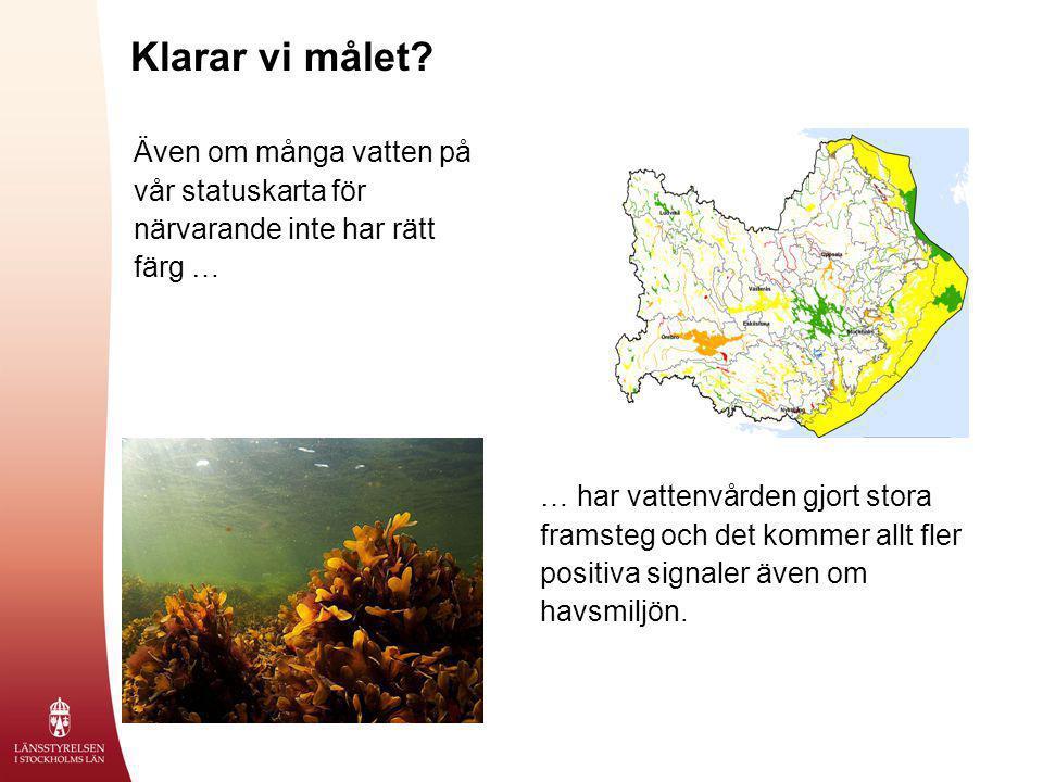Klarar vi målet? Även om många vatten på vår statuskarta för närvarande inte har rätt färg … … har vattenvården gjort stora framsteg och det kommer al