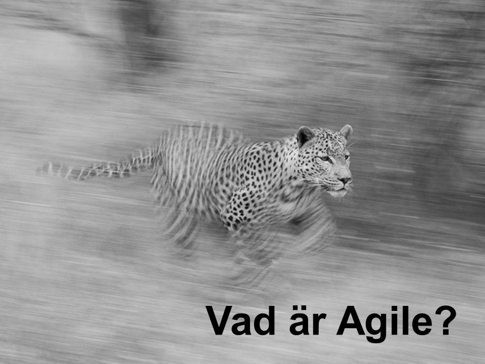 Vad är Agile?
