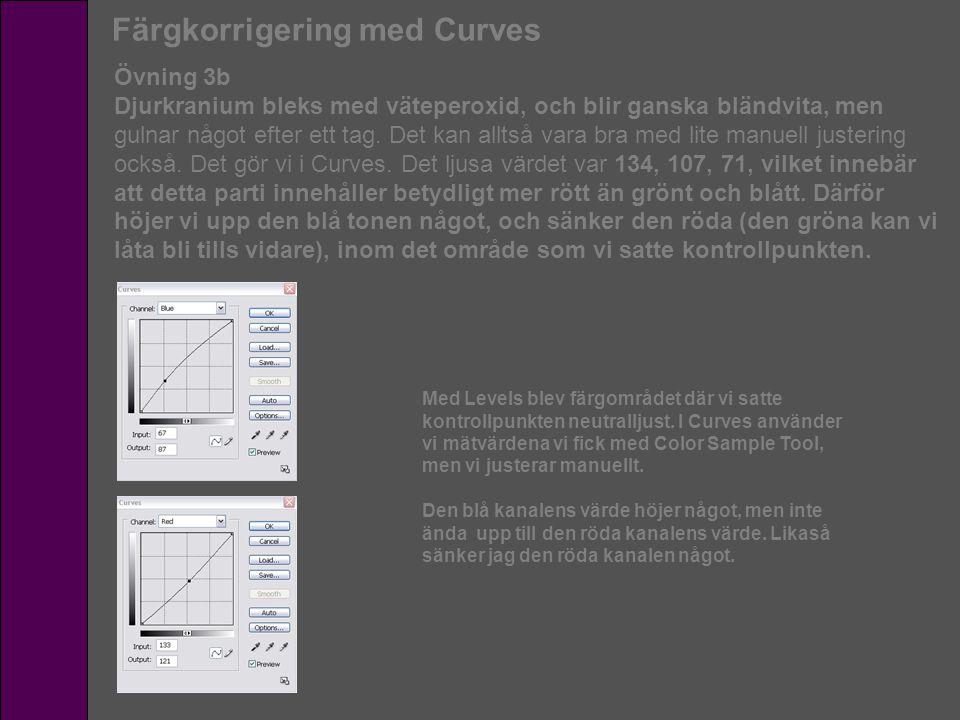 Färgkorrigering med Curves Övning 3b Djurkranium bleks med väteperoxid, och blir ganska bländvita, men gulnar något efter ett tag. Det kan alltså vara