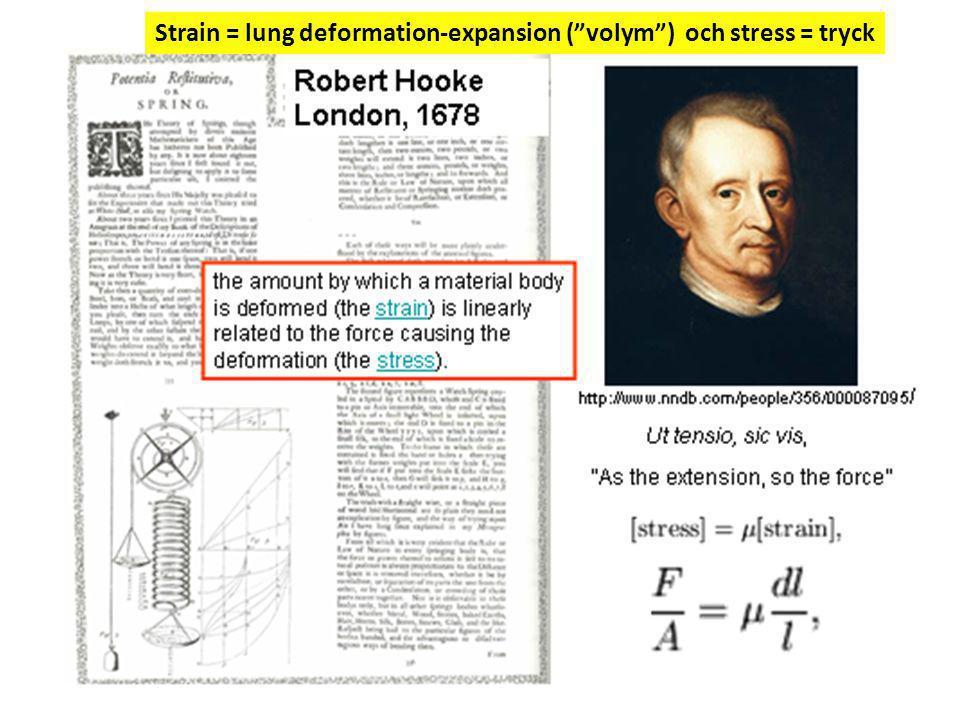 "Strain = lung deformation-expansion (""volym"") och stress = tryck"