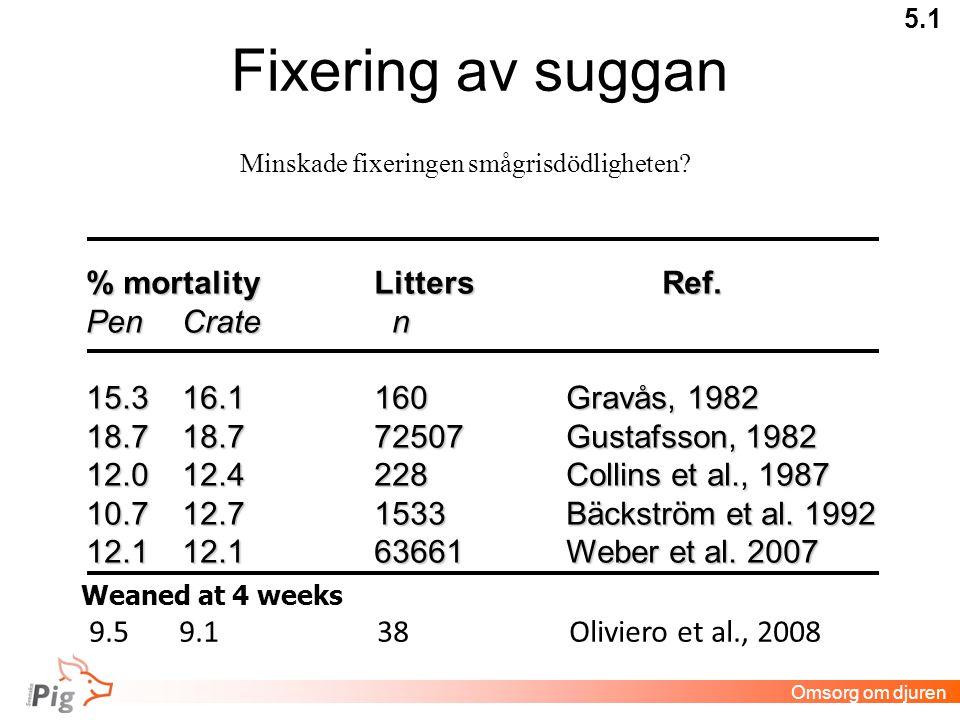 Fixering av suggan 5.1 % mortalityLittersRef.