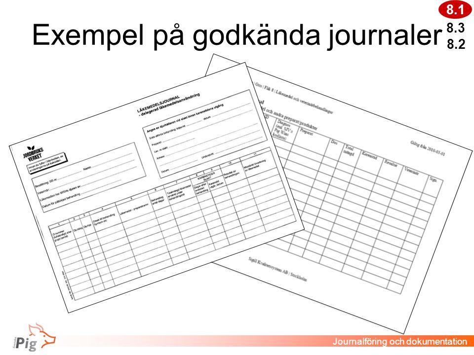 Exempel på godkända journaler 8.3 Journalföring och dokumentation 8.2 8.1